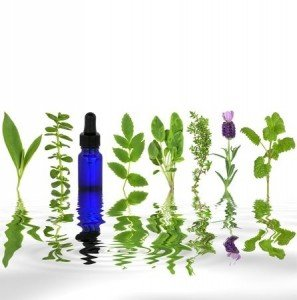 Best Essential Oils For Healing Broken Bones