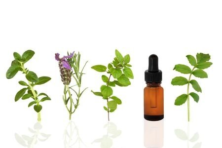 Essential oil for lung healing