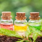 Best Essential Oils and Recipes For Varicose Veins Treatment