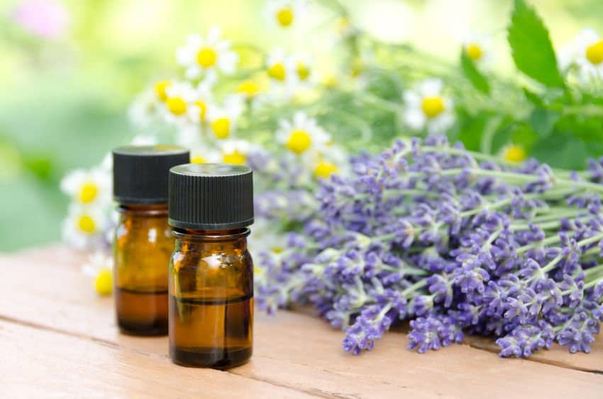 How To Use Essential Oils for PolyCystic Ovary Syndrome (PCOS) Treatment Essential Oil Benefits