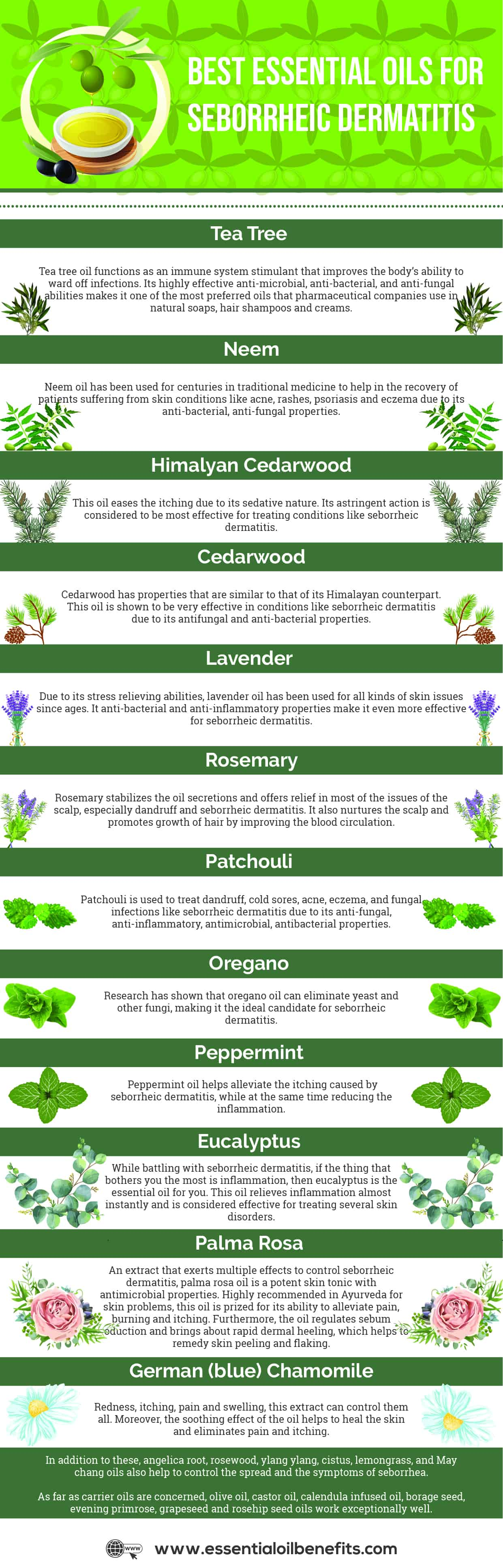 12 Essential Oils For Seborrheic Dermatitis Essential Oil Benefits