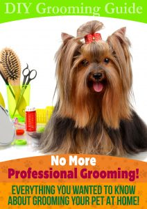 pet grooming guide