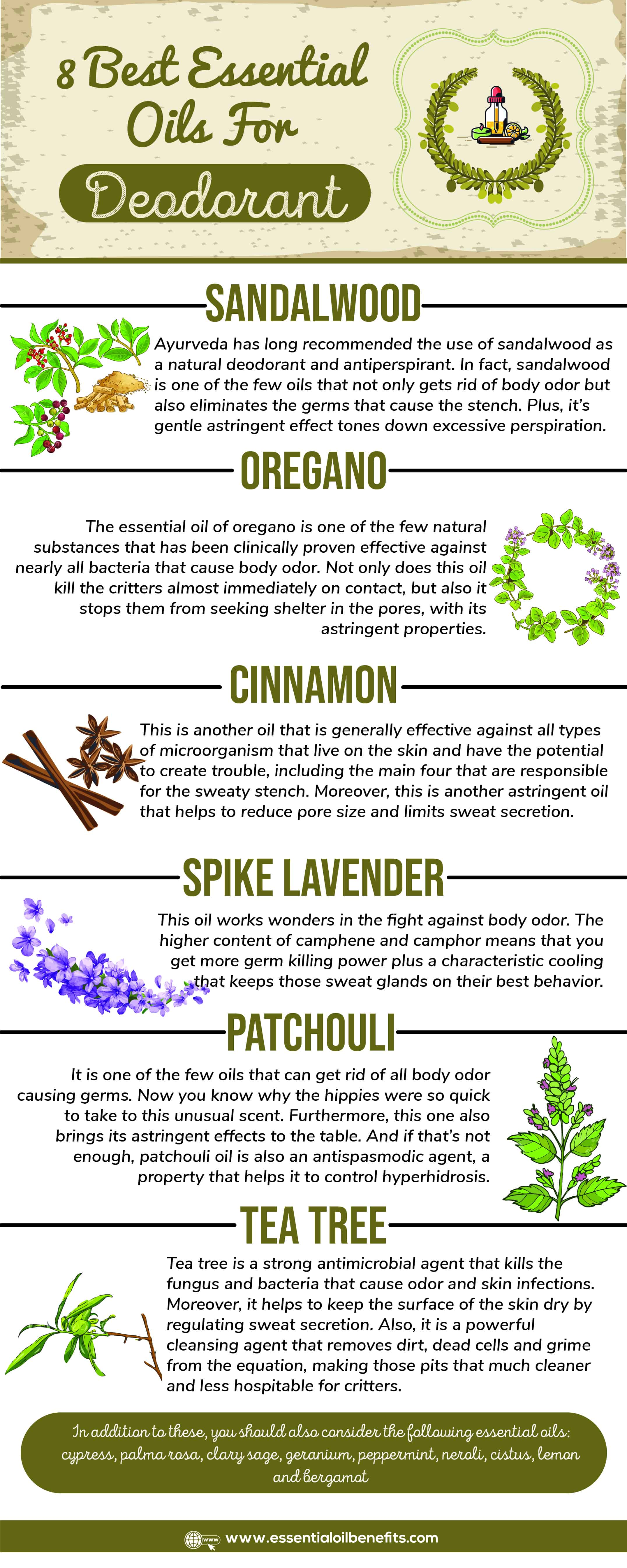 How Do You Get Rid Of Body Odor Using Essential Oils and 5 Home Remedies Essential Oil Benefits
