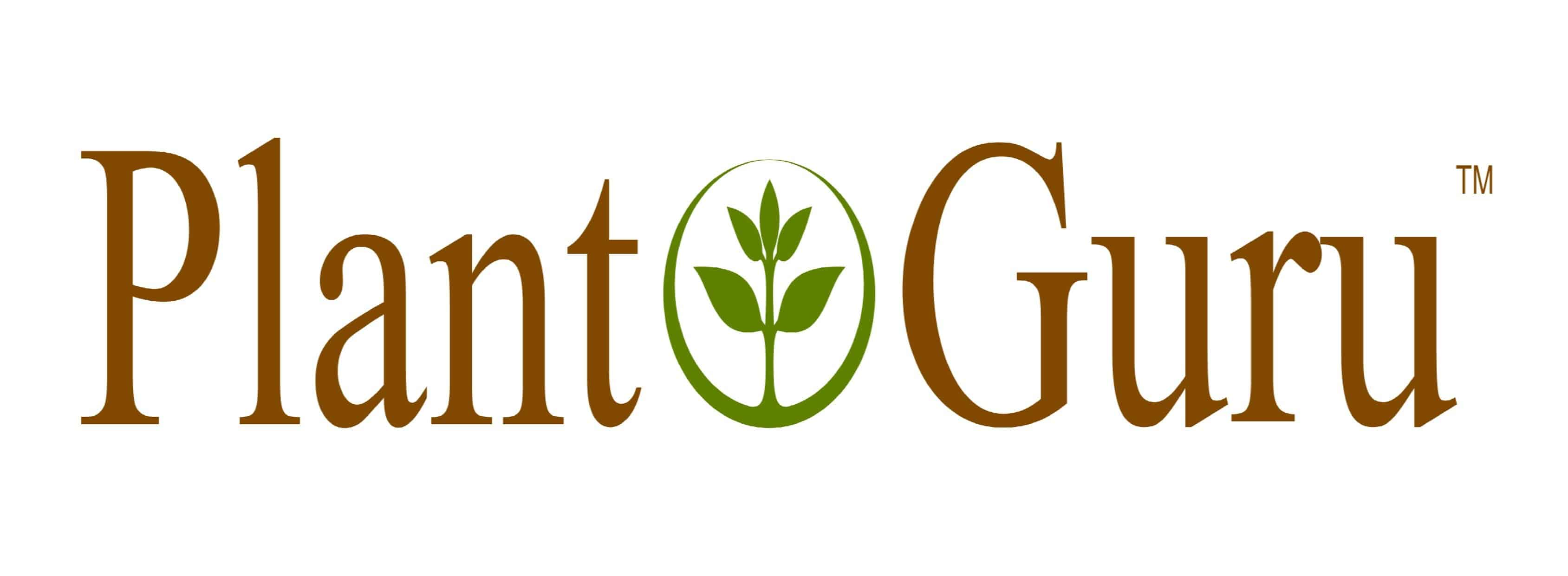 My Objective Review Of Plant Guru Essential Oil Benefits