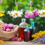 What Bit Me: The Ultimate Guide About Essential Oils For Bug Bites