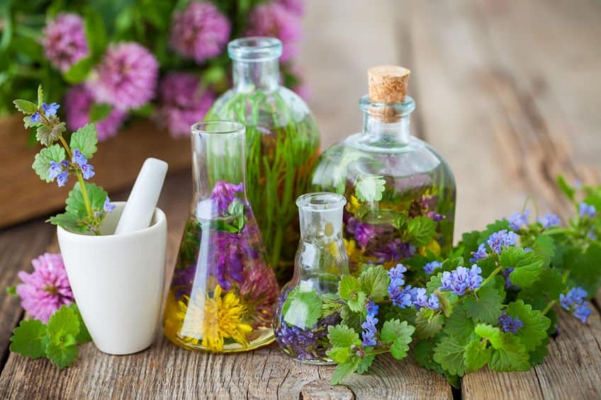 Essential Oils For Herpes: Managing America's Most Rampant Viral Disease Essential Oil Benefits