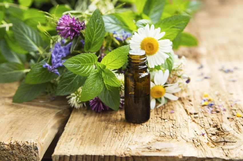 Essential Oils For Memory Loss, Alzheimer's and Dementia