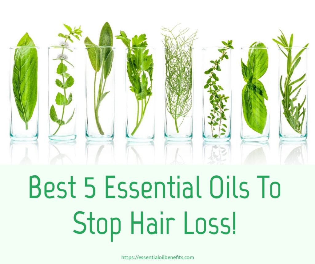Essential Oils For Hair Loss, Hair Thinning And Alopecia Essential Oil Benefits