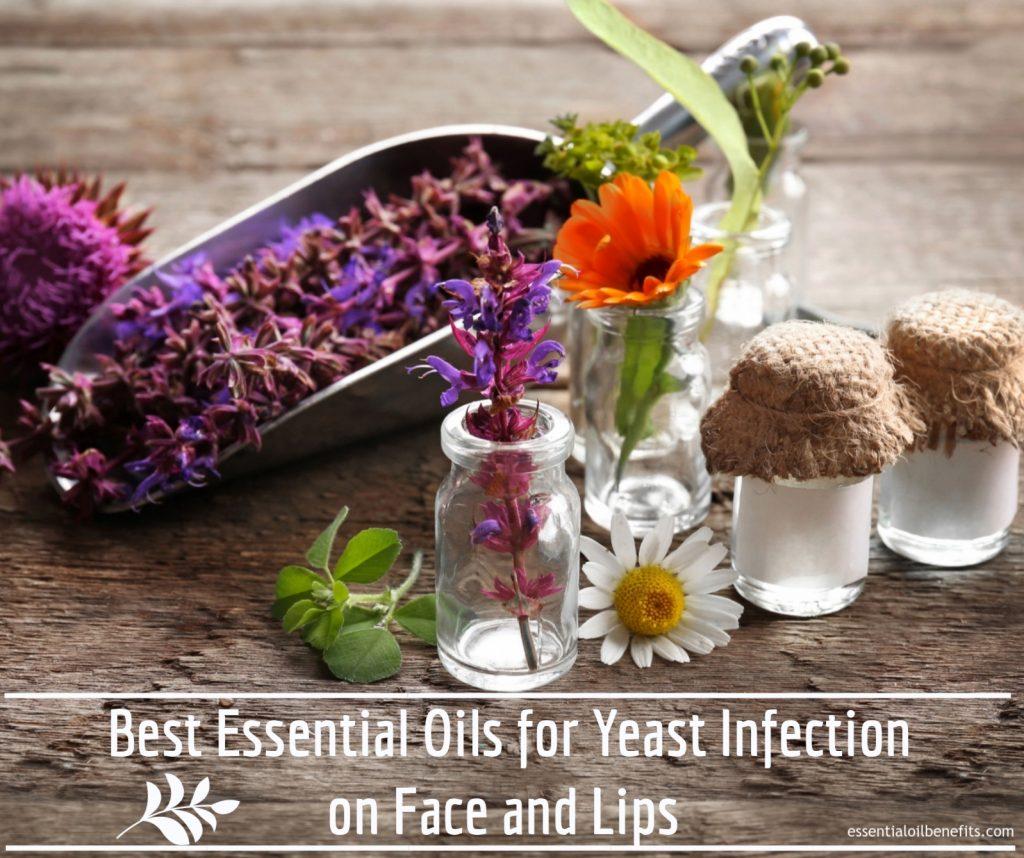 Pouvez-vous utiliser Huiles essentielles pour les infections à levures sur le visage et les lèvres Avantages des huiles essentielles &quot;width =&quot; 1024 &quot;height =&quot; 858 &quot;/&gt;</a></p><p>Ne vous en faites pas de haïr quand on vous dit que la beauté est en marche l&#39;intérieur &quot;quand ils l&#39;ont déjà à l&#39;extérieur?</p><p>Bien sûr, il y a un certain degré de vérité dans cette déclaration, mais ne nous leurrons pas. Nous trouvons tous un beau visage attrayant. Nous sommes automatiquement attirés par ces personnes. et même nous aspirons à les devenir. Heck, nous votons même pour voir qui sont les plus beaux peuples du monde. <span id=