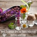 essential oils for yeast infection on face and lips