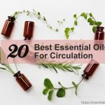 essential oils for circulation