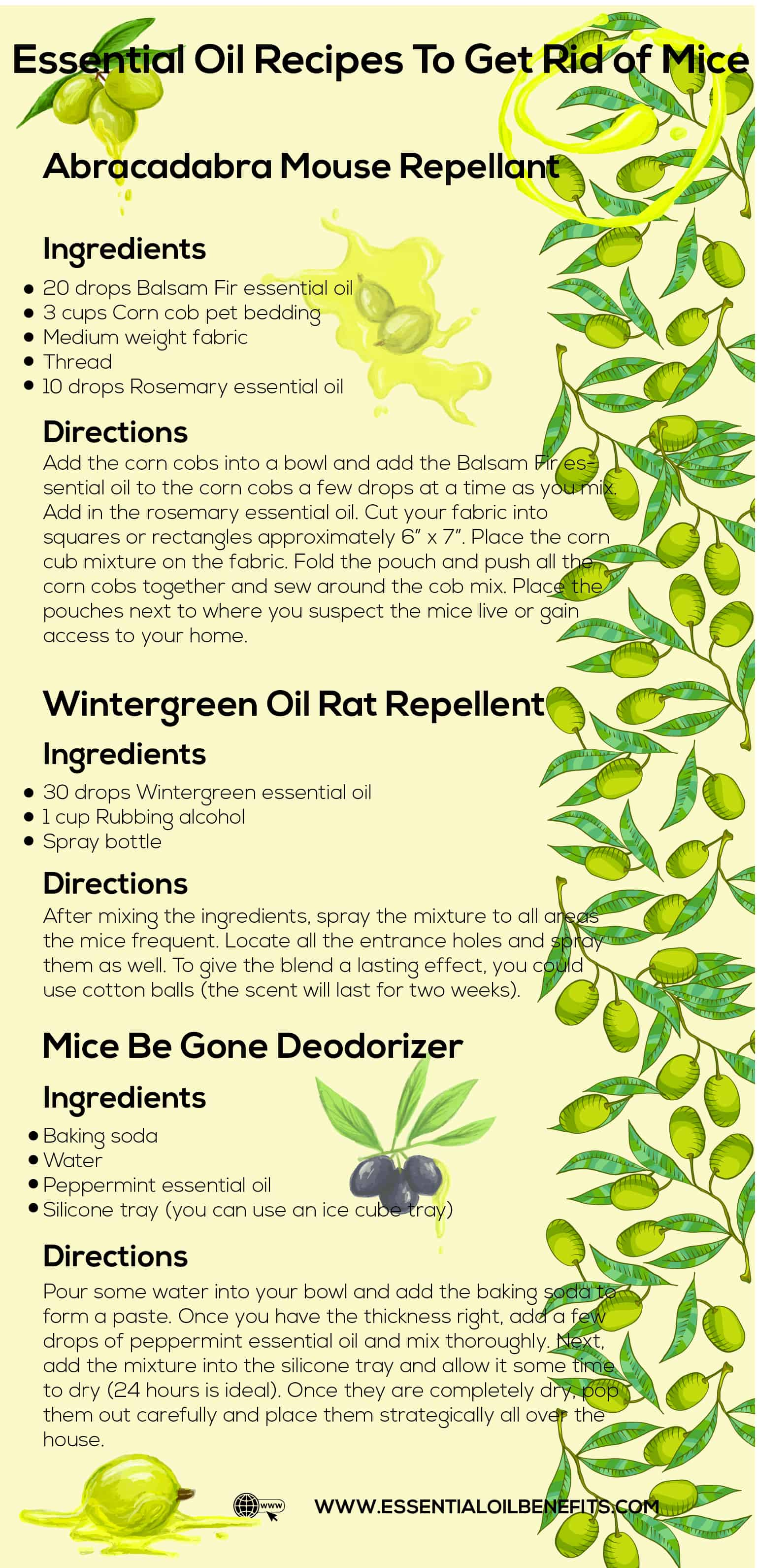 Best Ways To Get Rid Of Mice Naturally Using Essential Oils Essential Oil Benefits