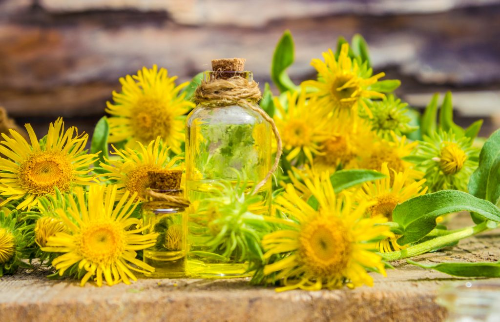 What Are The Most Expensive Essential Oils Essential Oil Benefits