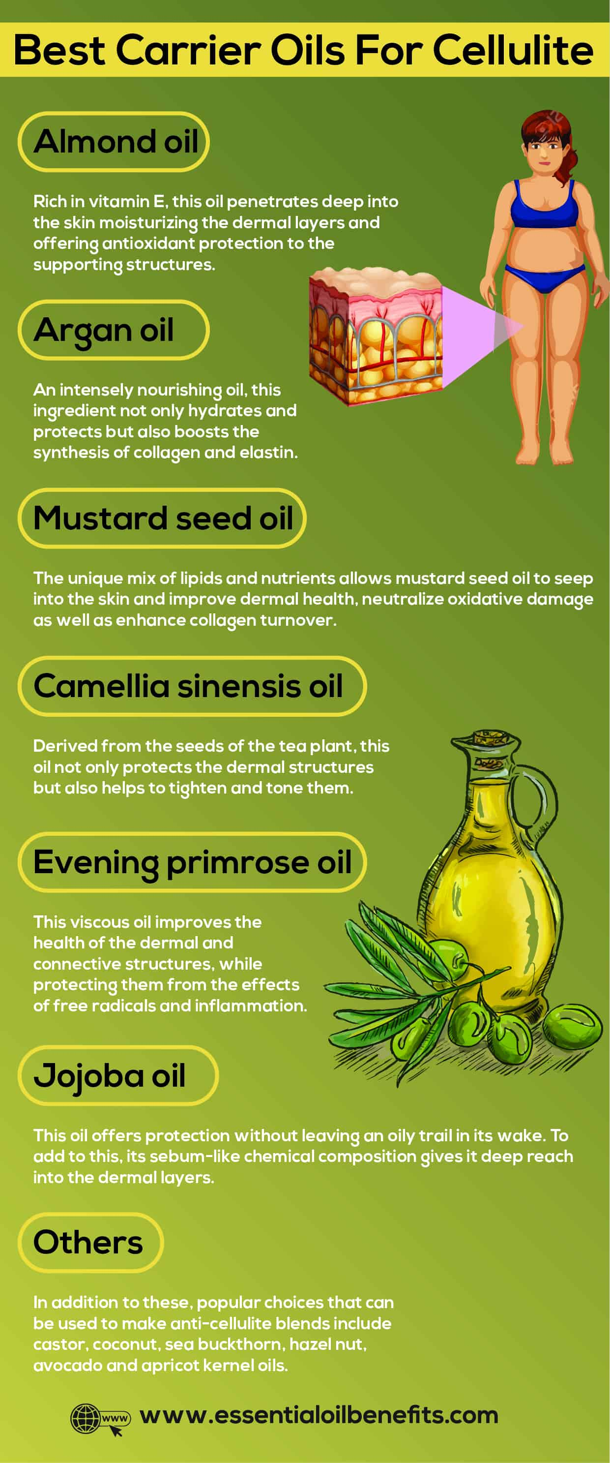 What Are The Best Essential Oils That Treat, Reduce And Remove Cellulite Essential Oil Benefits