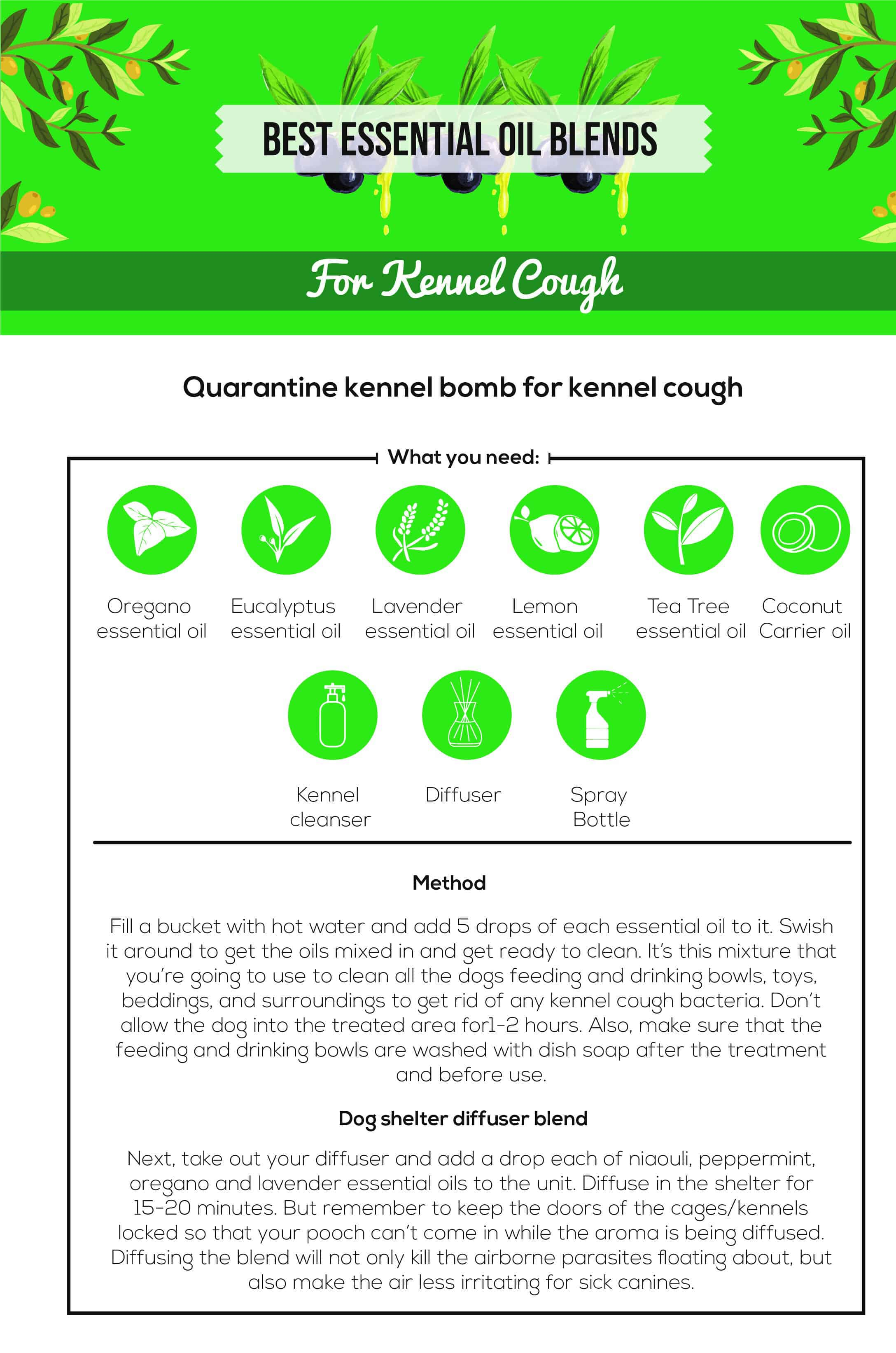 Essential Oils For Kennel Cough: Man's Best Friend's Worst Nightmare? Essential Oil Benefits