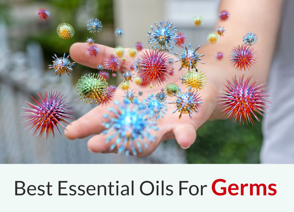 5 Best Essential Oils For Killing Germs Essential Oil Benefits