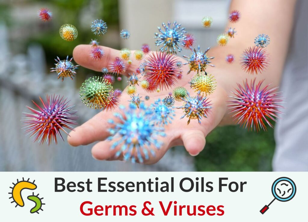 Best Essential Oils To Prevent The Spread Of Germs & Viruses Essential Oil Benefits